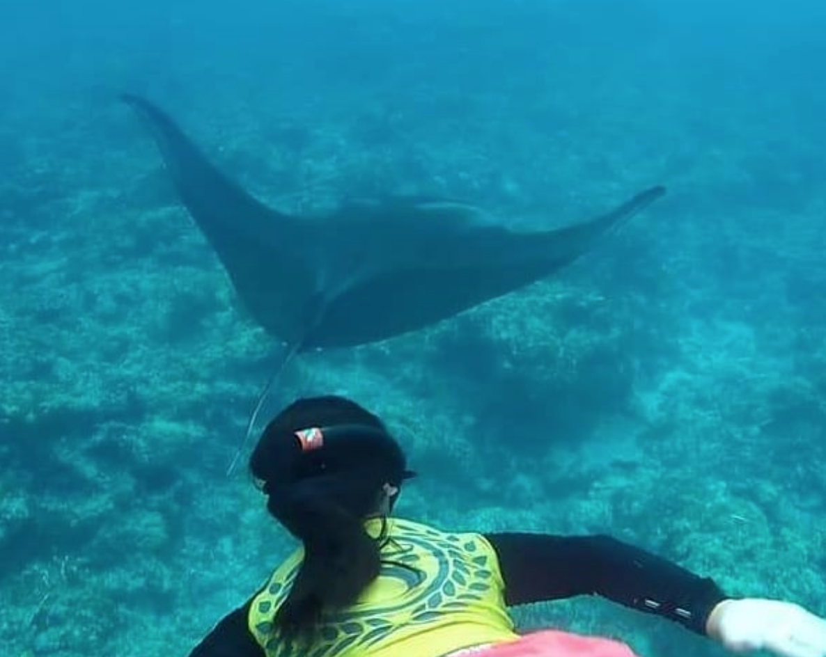 Photo of the Week! MIA LEE with Manta Rays in Tumon Guam